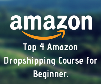 Top 4 Amazon Dropshipping Course for Beginner .